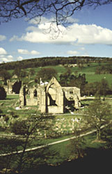 bolton_priory1.jpg